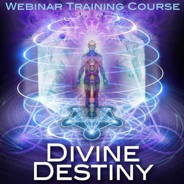 Quantum Access™ Level 1 Online Training Course