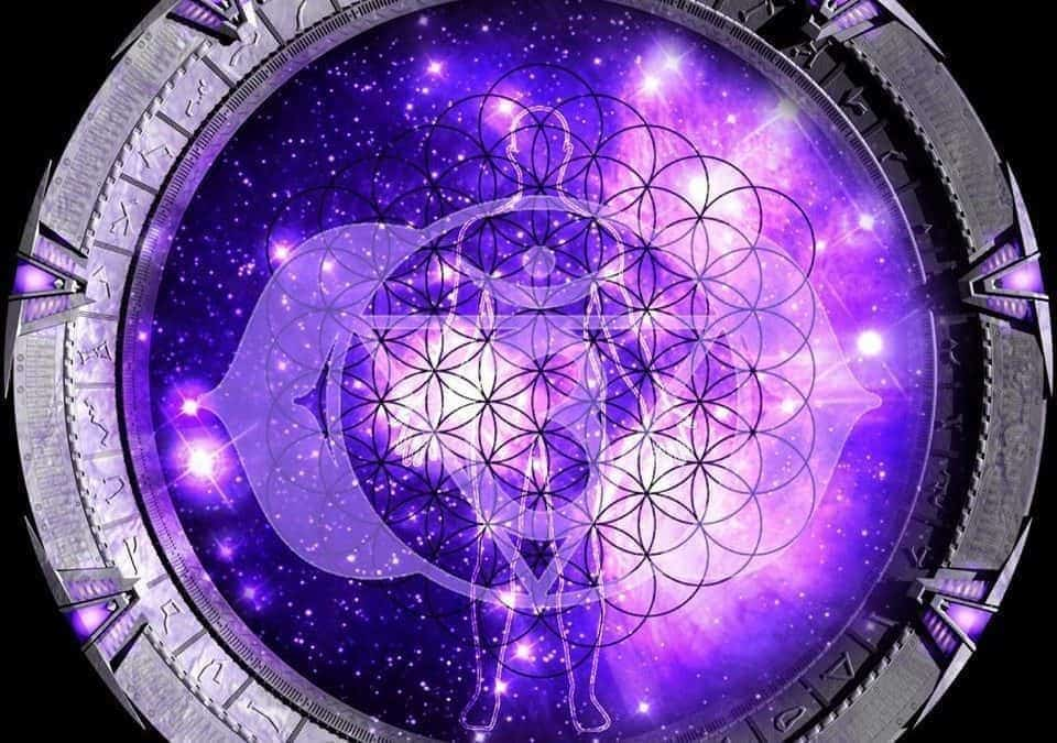 Solstice Stargate Global Activations