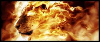 LEO REFINERS FIRE OF TRANSFORMATION IS REALM OF JOY