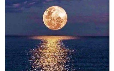 Just Hours Till Wesak Full Flower Moon Activations