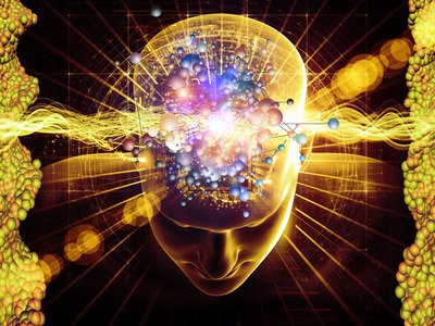 Dual Brain Timelessness